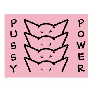 Cartão Postal Grupo cor-de-rosa das mulheres da resistência das