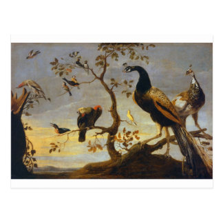 Cartão Postal Grupo de pássaros empoleirados em ramos Frans