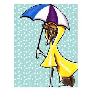 Cartão Postal Guarda-chuva do galgo italiano louco