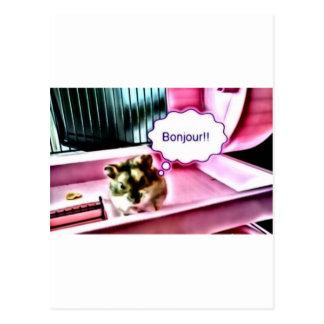 Cartão Postal Hamster de Bonjour