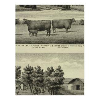 Cartão Postal Hayes, Olathe, e residência e fazenda de Ellis