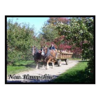 Cartão Postal Hayride de New Hampshire