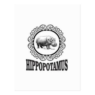 Cartão Postal Hipopótamo quadro