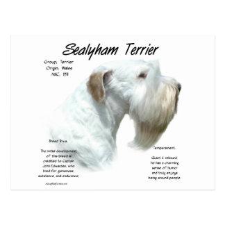 Cartão Postal História de Sealyham Terrier