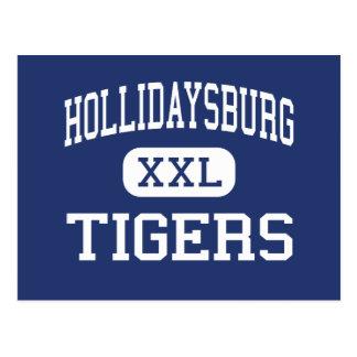 Cartão Postal Hollidaysburg - tigres - área - Hollidaysburg