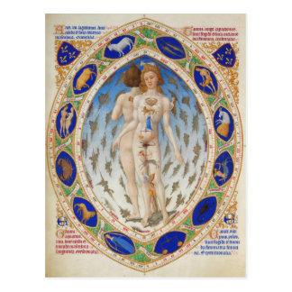 Cartão Postal Homem anatômico em Très Riquezas Heures do duque