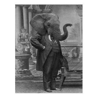 Cartão Postal Homem do Victorian do vintage no terno com cabeça