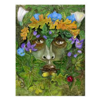 Cartão Postal Homem verde