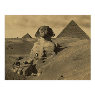Cartão Postal Homens e camelos na pata da esfinge, pirâmides