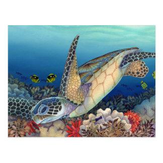 Cartão Postal Honu (tartaruga de mar verde)