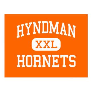 Cartão Postal Hyndman - zangões - meio - Hyndman Pensilvânia