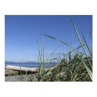 Cartão Postal Ilha 5 de Whidbey