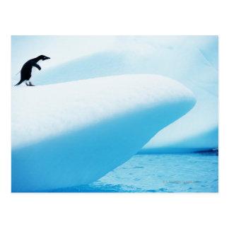 Cartão Postal Ilha de Petermann, a Antártica