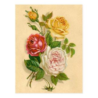 Cartão Postal Ilustração cor-de-rosa do vintage bonito