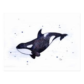 Cartão Postal Ilustração da baleia de assassino da orca