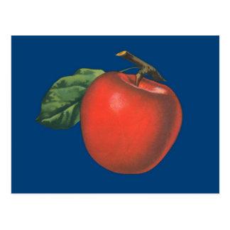 Cartão Postal Ilustração da fruta do vintage de Apple