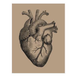 Cartão Postal Ilustração do coração do vintage