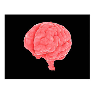 Cartão Postal Imagem conceptual do cérebro humano 5