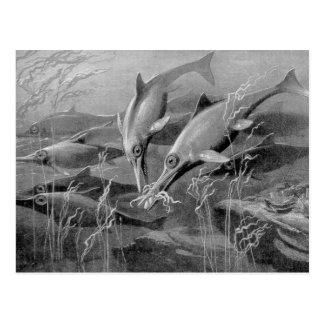 Cartão Postal Imagem preto e branco do ichthyosaur retro do