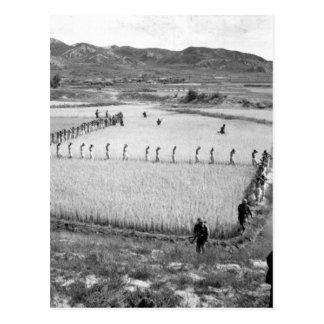 Cartão Postal Imagem prisoners_War norte-coreana