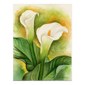 Cartão Postal Imagens ou imagens da pintura das flores do lírio