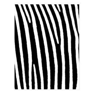 Cartão Postal Impressão animal da zebra