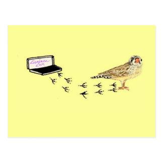 Cartão Postal Impressões do pé do passarinho do bebê