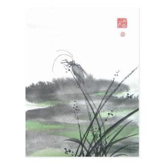 Cartão Postal Inseto do zen na grama