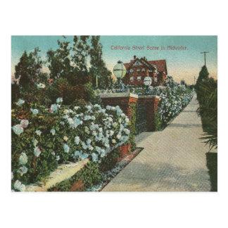 Cartão Postal Inverno de Califórnia do vintage