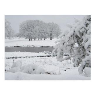 Cartão Postal Inverno do leste de Texas, 2009