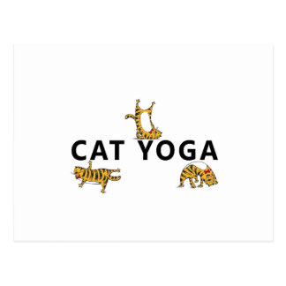 Cartão Postal ioga do gato
