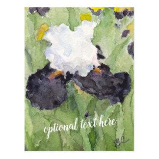 Cartão Postal Íris farpada alta branca preta