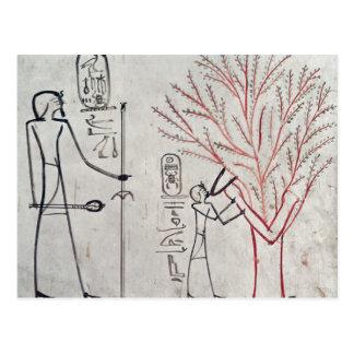 Cartão Postal Isis metamorfoseado em uma árvore do sicômoro