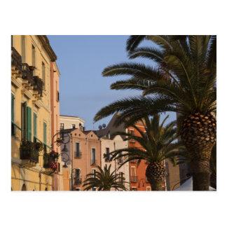 Cartão Postal Italia, Sardinia, Cagliari. Construções e palmas