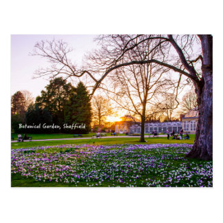 Cartão Postal Jardim botânico em Sheffield