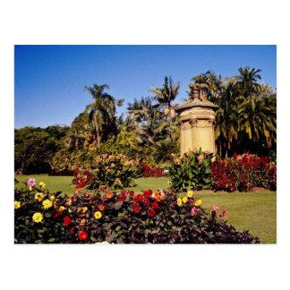 Cartão Postal Jardim botânico real vermelho, fluxo de Sydney,