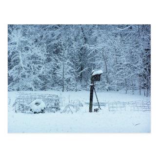 Cartão Postal Jardim da neve