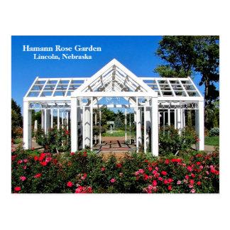Cartão Postal Jardim de rosas #256n 0256 de Hamann