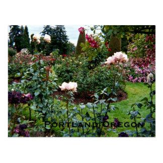 Cartão Postal Jardim de rosas patriótico das cores