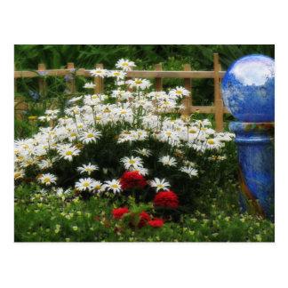 Cartão Postal Jardim de Shasta