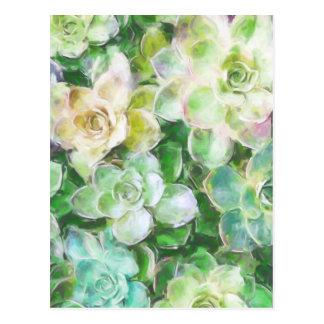 Cartão Postal Jardim do Succulent por Cindy Bendel