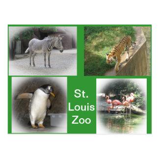 Cartão Postal Jardim zoológico de St Louis