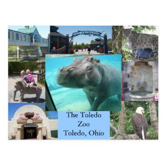 Cartão Postal Jardim zoológico de Toledo