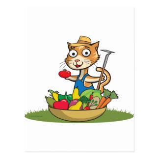 Cartão Postal Jardineiro do gato
