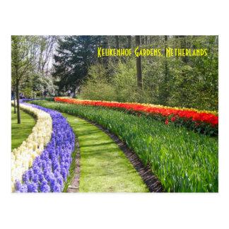 Cartão Postal Jardins de Keukenhof, Países Baixos