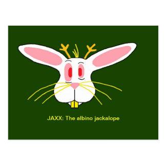 Cartão Postal JAXX: O albino Jackalope