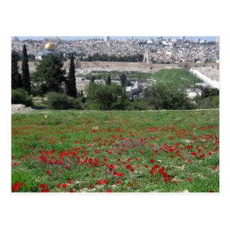 Cartão Postal Jerusalem do ouro e de flores vermelhas