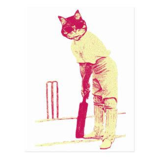 Cartão Postal jogador de cricket do gato do vintage
