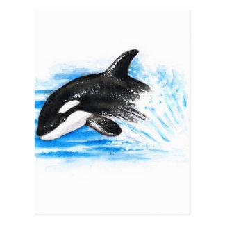 Cartão Postal Jogo da orca