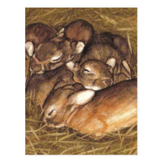 Cartão Postal jogos dos coelhos do bebê na arte do ninho